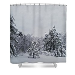 Blizzard In New England Shower Curtain