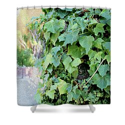 Block Of Ivy Shower Curtain
