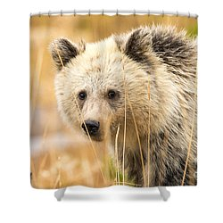 Ursine Soul Shower Curtain
