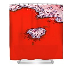 Shower Curtain featuring the photograph Blood Red Heart Reef by Az Jackson