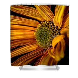 Bloom Bloom Shower Curtain
