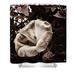 Bloom In Sepia Shower Curtain