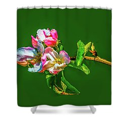 Bloom May 2016 Artistic Shower Curtain by Leif Sohlman