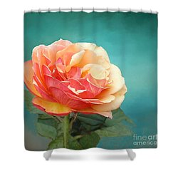 Perfect Rose Of Spring Shower Curtain