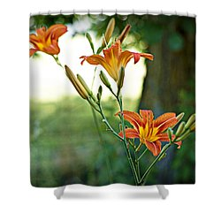 Bloom Where You're Planted Shower Curtain by Cricket Hackmann