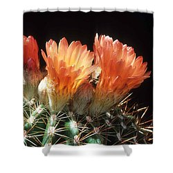 Bloomin' Barrel Shower Curtain by Laurie Paci