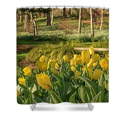 Bloomin Tulips Shower Curtain
