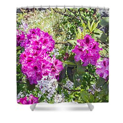 Blooming Azalea's Shower Curtain by Allan Levin