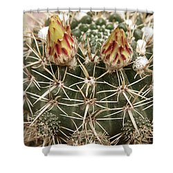 Blooming Cactus1 Shower Curtain