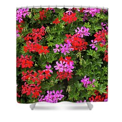 Blooming Flowers Background Shower Curtain