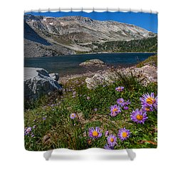 Blooming In Snowy Range Shower Curtain