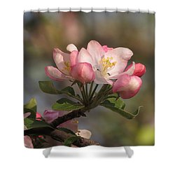 Shower Curtain featuring the photograph Blooming by Kimberly Mackowski