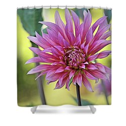 Blooming Pink Shower Curtain by Patricia Strand