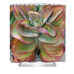 Blooming Succulent Shower Curtain