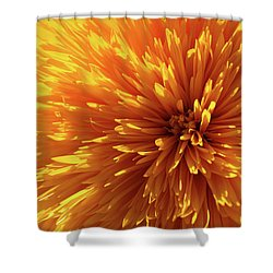 Blooming Sunshine Shower Curtain by Marie Leslie