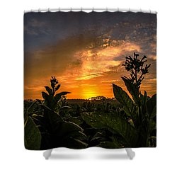 Blooming Tobacco Shower Curtain