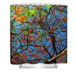 Blooming Tree Shower Curtain