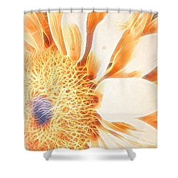 Bloomlit Shower Curtain