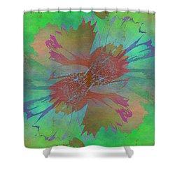 Blooms In The Mist Shower Curtain by Tim Allen