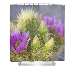 Blooms Of Spring Pink And Purple Shower Curtain