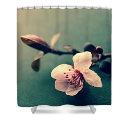 Blossom Shower Curtain by Caitlyn Grasso