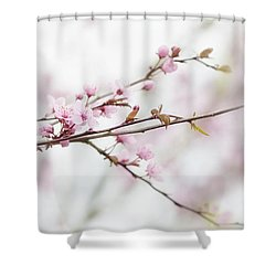 Shower Curtain featuring the photograph Blossom Pink by Rebecca Cozart