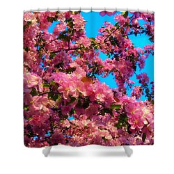 Blossom Tops Shower Curtain
