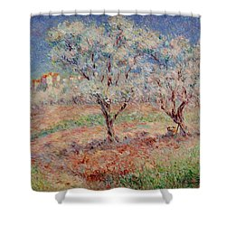 Blossom Trees  Shower Curtain