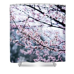 Shower Curtain featuring the photograph Blossoming Buds by Parker Cunningham