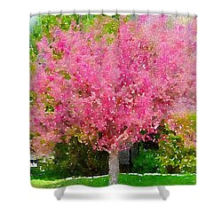 Blossoming Crabapple Tree Shower Curtain by Donald S Hall