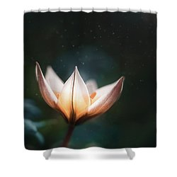 Blossoming Light Shower Curtain