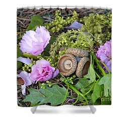 Shower Curtain featuring the photograph Blossoms And Acorn by Charles Robinson