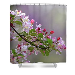 Blossoms And Bokeh Shower Curtain by Ann Bridges