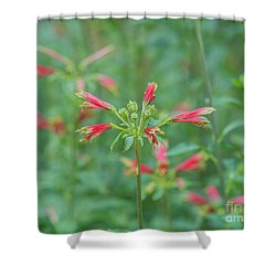 Blossoms In The Green Shower Curtain