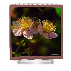 Blossoms.1 Shower Curtain