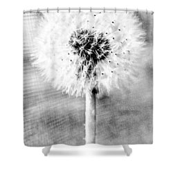 Blowing In The Wind Pencil Effect Shower Curtain