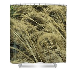 Blowing In The Wind Shower Curtain by Rick Friedle