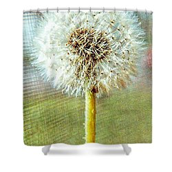Blowing In The Wind Shower Curtain