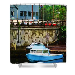 Shower Curtain featuring the photograph Blue Boat By The Mamalahoa Highway by Timothy Bulone