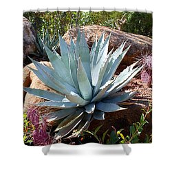 Shower Curtain featuring the photograph Blue Agave by Kathryn Meyer