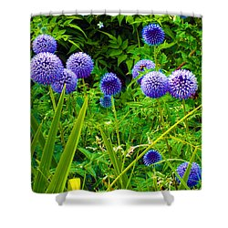 Blue Allium Flowers Shower Curtain