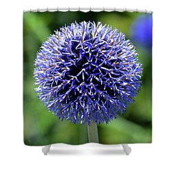 Shower Curtain featuring the photograph Blue Allium by Terence Davis