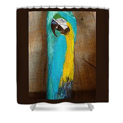 Blue And Gold Macaw Shower Curtain by Ann Michelle Swadener