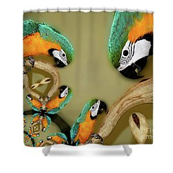Blue And Gold Macaw Parrot Abstract Shower Curtain