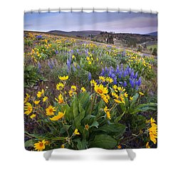 Blue And Gold Shower Curtain by Mike  Dawson