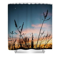 Blue And Gold Sunset Shower Curtain