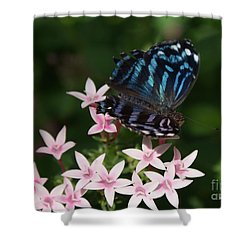 Blue And Pink Make Lilac Shower Curtain