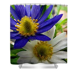 Shower Curtain featuring the digital art Blue And White Anemones by Shelli Fitzpatrick