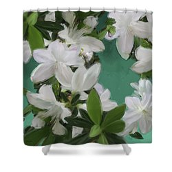Blue And White Flower Art 2 Shower Curtain