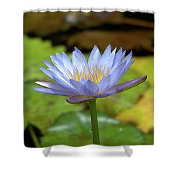 Blue And Yellow Water Lily Shower Curtain
